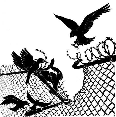 Solidarity to Prisoners image of several black birds tearing down a wire fence; from the Dreaming Freedom | Practicing Abolition website.